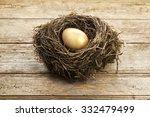Golden Egg In Nest On Vintage...