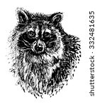ink hand drawn raccoon head.... | Shutterstock .eps vector #332481635