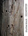 tree bark with holes | Shutterstock . vector #332499959