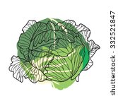 white cabbage | Shutterstock .eps vector #332521847