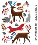 Set Vector Forest Animals....