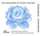 blue rose infographics ... | Shutterstock . vector #333016661