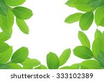 fresh green leaves at the office | Shutterstock . vector #333102389