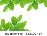 fresh green leaves at the office | Shutterstock . vector #333102419