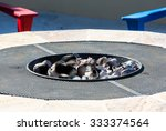 gas or propane powered firepit... | Shutterstock . vector #333374564