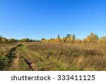 Beautiful Autumn Landscape. Th...