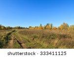 Beautiful Autumn Landscape. Th...