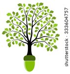vector oak tree growing from... | Shutterstock .eps vector #333604757
