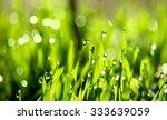 fresh green grass with water... | Shutterstock . vector #333639059