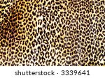 brown and black leopard pattern | Shutterstock . vector #3339641