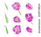 watercolor set of tulips petals ... | Shutterstock . vector #333978824