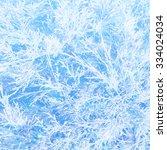 winter background | Shutterstock .eps vector #334024034