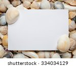 sea shell background with space ... | Shutterstock . vector #334034129
