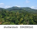 tropical forest landscape with... | Shutterstock . vector #334200161