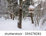 Bird Feeder In Winter Park