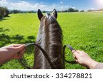Stock photo horse on field with rider 334278821