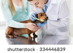 Medicine  Pet  Animals  Health...