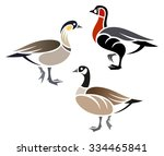 stylized geese   cackling goose ... | Shutterstock .eps vector #334465841