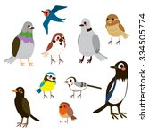 Cute Bird Collection Set With...