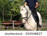 Horseman And A Beautiful Blue...
