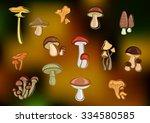 fresh forest edible mushrooms... | Shutterstock .eps vector #334580585