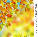 autumn foliage. autumn time.... | Shutterstock . vector #334682144