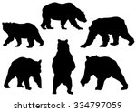 Collection Of The Bear...