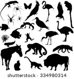 Stock vector set of animal silhouettes 334980314