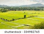 terrace rice fields in...   Shutterstock . vector #334982765
