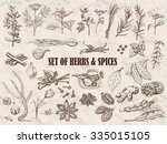 set of herbs and spices in... | Shutterstock .eps vector #335015105