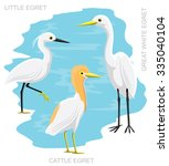 Bird Egret Set Cartoon Vector...