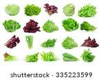 Fresh  Lettuce Leaves Isolated...