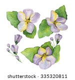 floral composition of violets... | Shutterstock . vector #335320811