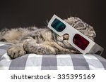 Stock photo funny scottish fold cat watching a movie on television in d glasses lying on a pillow on the sofa 335395169
