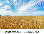 Field Of Wheat Crops In Summe...