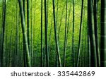 Bamboo Forest Trees Nature...