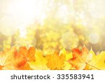 autumn background framed with... | Shutterstock . vector #335583941