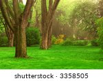old trees in the spring foggy... | Shutterstock . vector #3358505