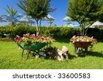 Decorative Flower Garden With...