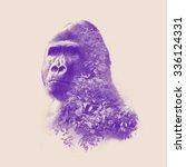 gorilla portrait with double... | Shutterstock . vector #336124331