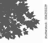 marple leaves vector silhouette   Shutterstock .eps vector #336253229