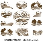 vector design elements with... | Shutterstock .eps vector #336317861