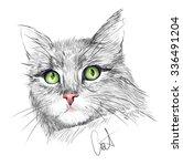 portrait of the grey cat | Shutterstock .eps vector #336491204
