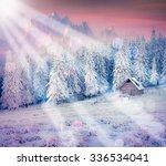 winter holidays postcard... | Shutterstock . vector #336534041