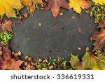 Autumn Background  Hazelnuts ...