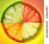 citrus slice | Shutterstock . vector #3366281