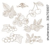 vector illustration set of... | Shutterstock .eps vector #336703007