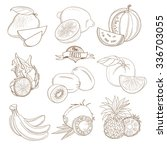 vector illustration set of... | Shutterstock .eps vector #336703055