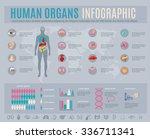 human organs infographic set... | Shutterstock .eps vector #336711341