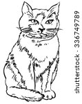 cat   hand drawn vector... | Shutterstock .eps vector #336749789